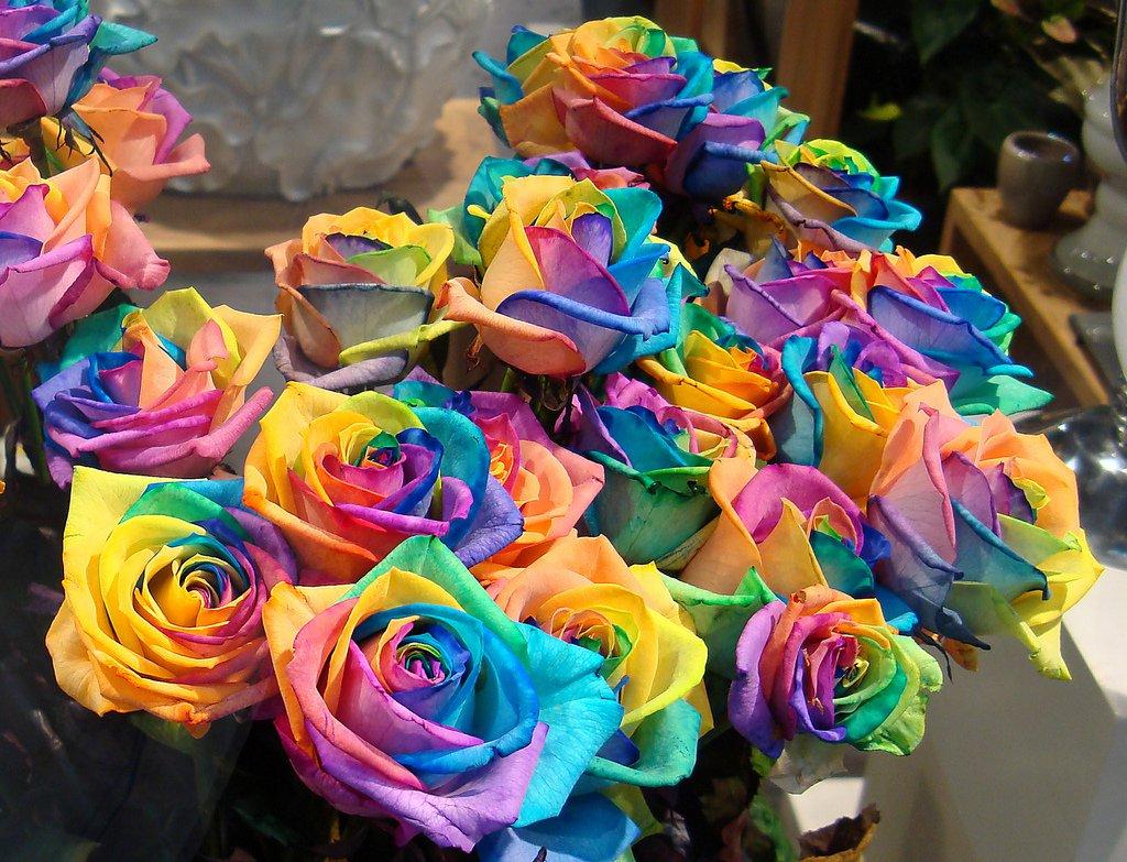 rose arcobaleno esperimento tutorial