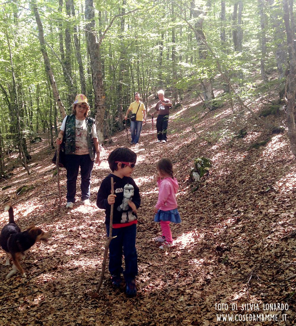 bimbi e nonni nel bosco